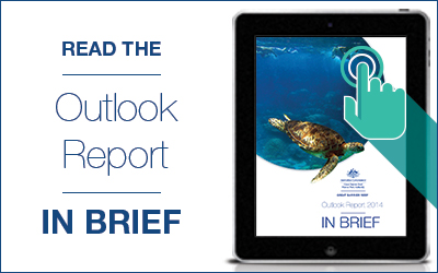 Read the Outlook Report in brief