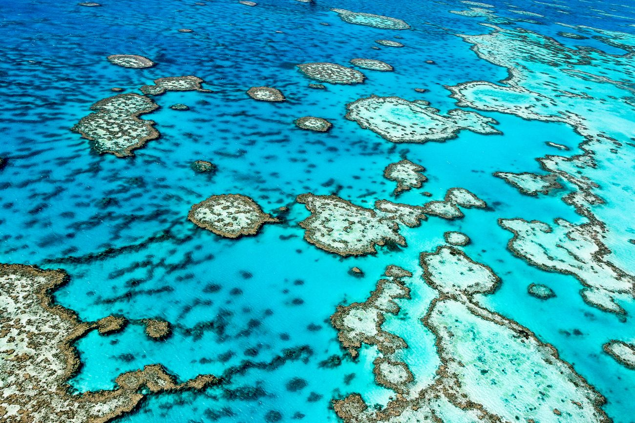 Image of Great Barrier Reef, QLD. Image credit Edward Haylan