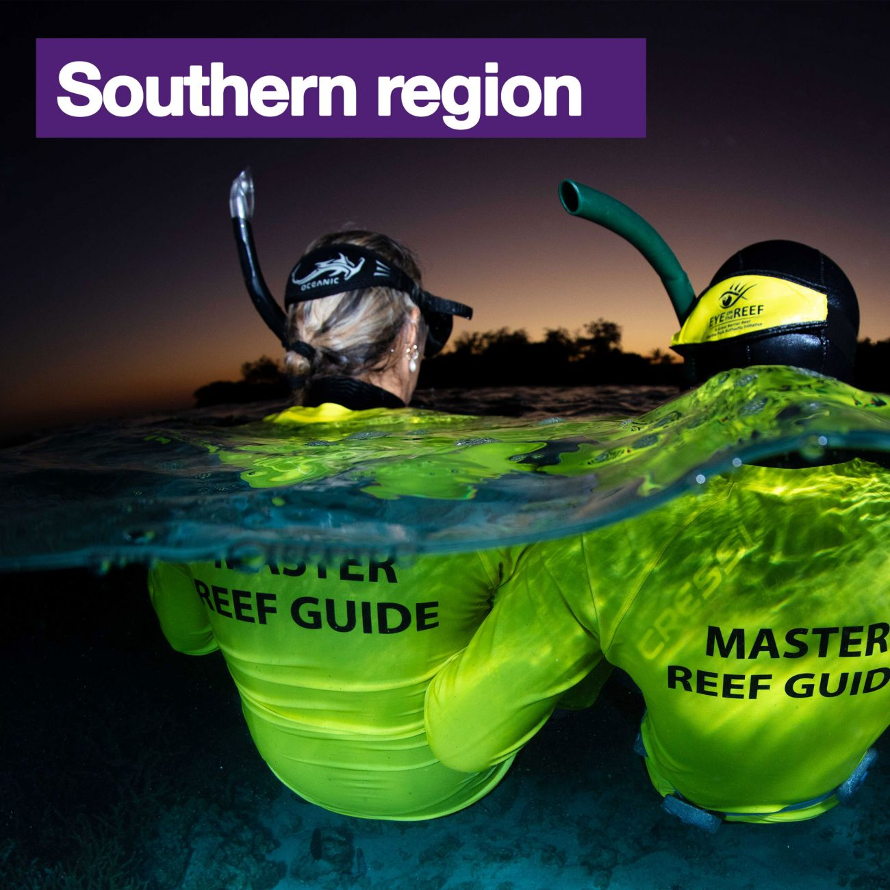 Master Reef Guides in the Southern region