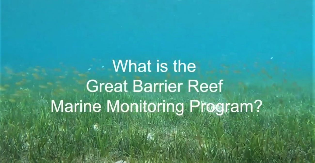 What is the Marine Monitoring Program - sea grass image