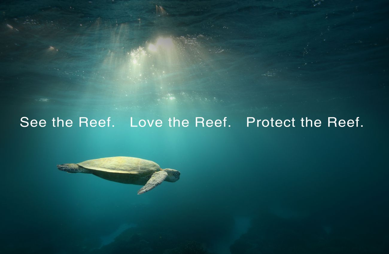 Image of a turtle with the words See the Reef, Love the Reef, Protect the Reef