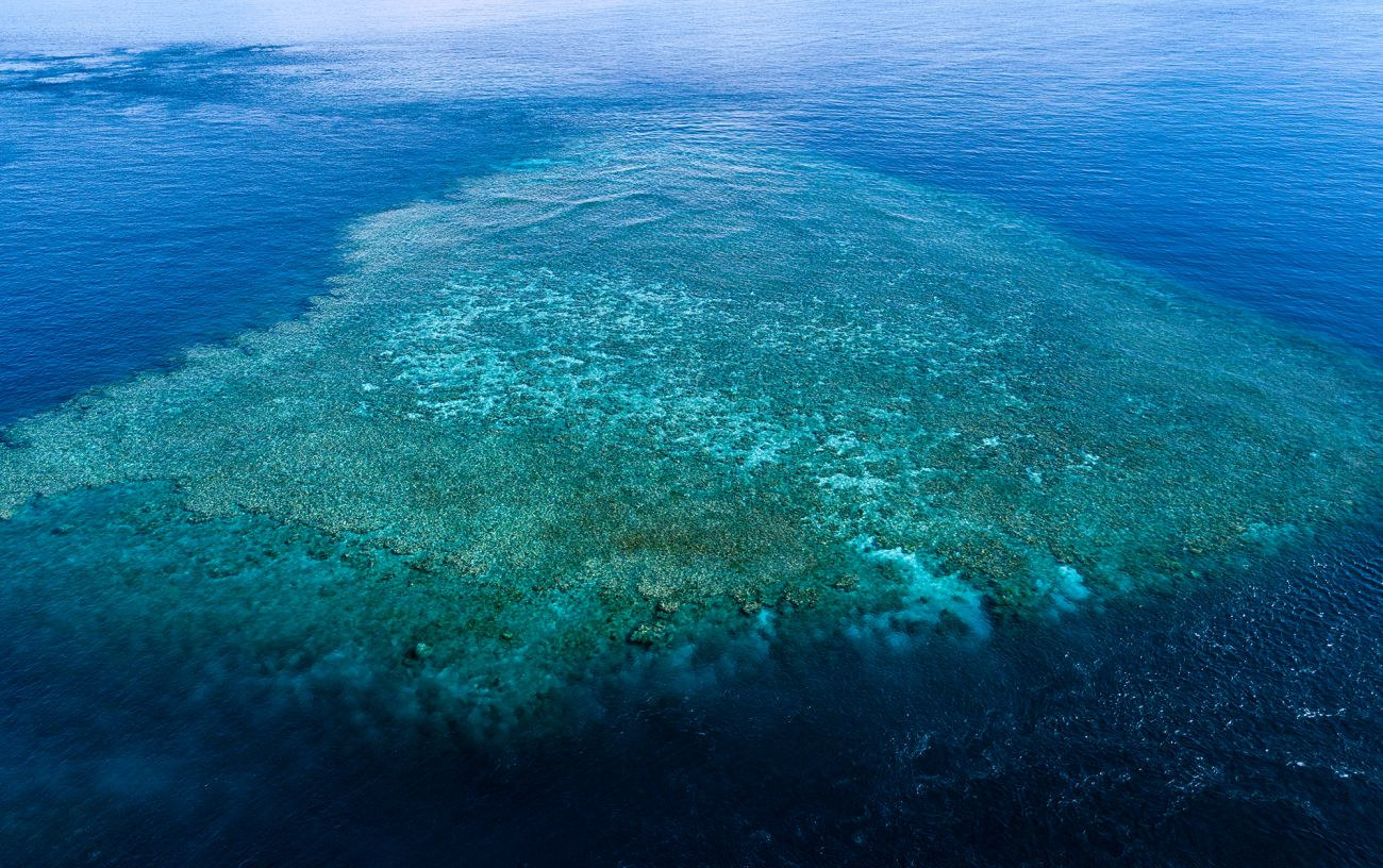 Image of aerial, Great Barrier Reef. Image credit Nico Faramaz