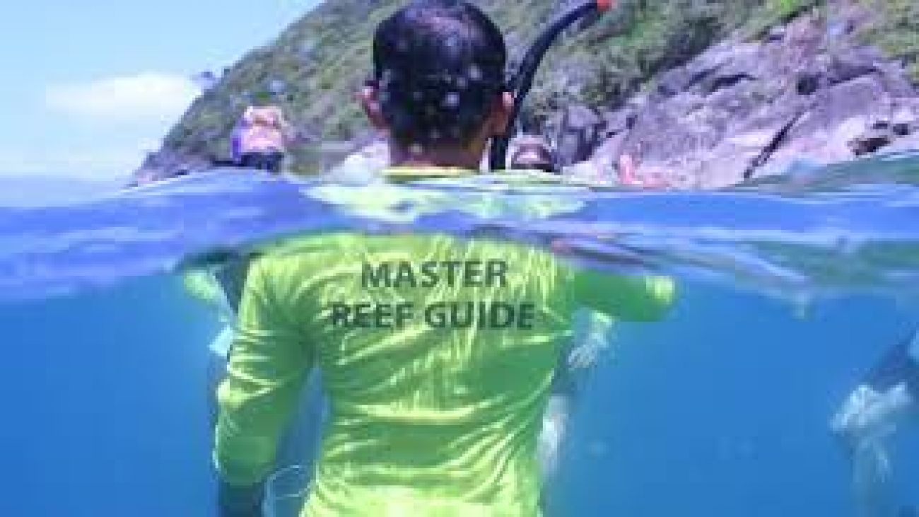 Image of a master Reef Guide snorkelling on the Great Barrier Reef
