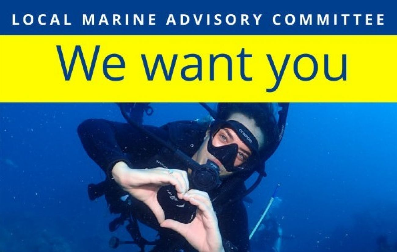 We want you LMAC - image of a diver with a heart shape