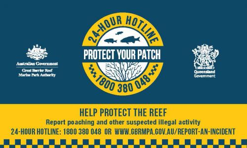 Decorative graphic that supports the 'Protect your patch' campaign