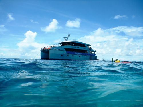 Marine Parks rangers conduct compliance patrols throughout the Marine Park