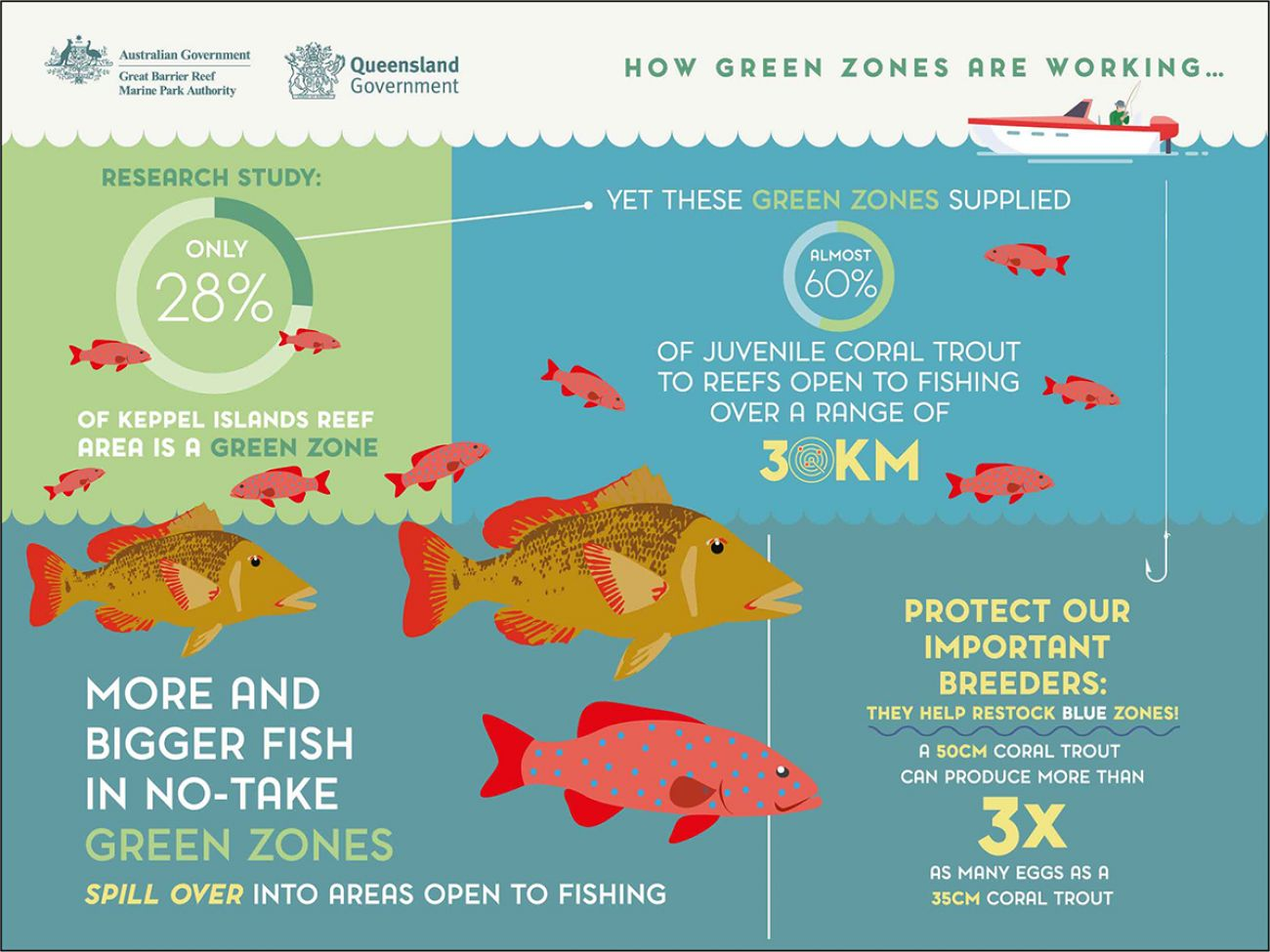Decorative graphic that shows how no-take green zones work