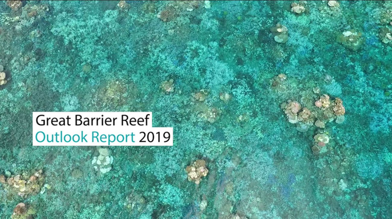 Outlook Report 2019 image