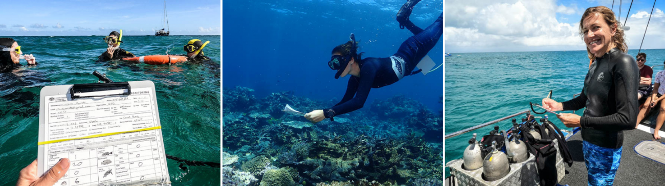 Reef health monitoring as part of the Tourism Activation Project